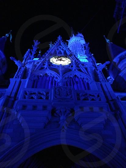 Magic kingdom  photo