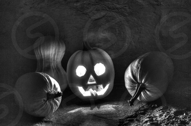 halloween scarry holiday pumpkins dark night jack lantern photo