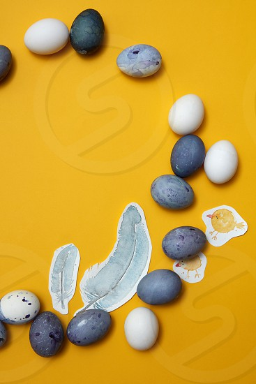 eggs and painted feathers on a yellow background flat lay photo