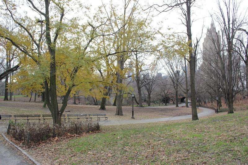 Central Park (New York) photo