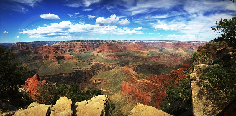 ...You can be anything in this world just don't be ungrateful. (Location• Grand Canyon south rim AZ) photo