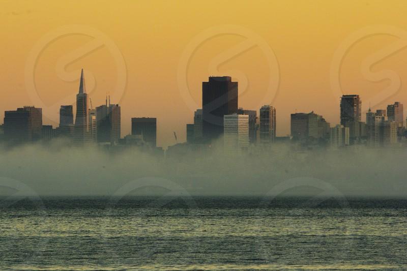 cityscape photo  photo