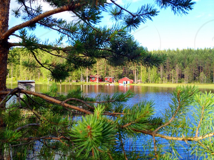 Cloud clouds mirror reflection water lake landscape nature forest dalarna Sweden sea bay summer red red house cottage trees sky pine pine tree photo