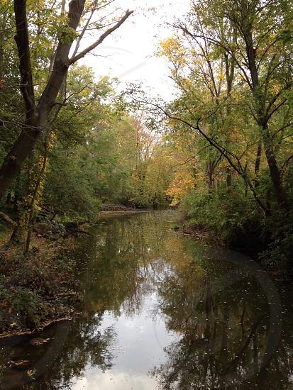 Meandering Creek.  photo