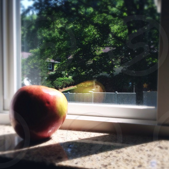 Apple is planning her escape.  photo