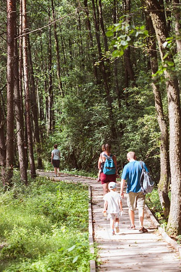 Family going a path in forest. Mother father boy and girl spending time together vacations close to nature photo