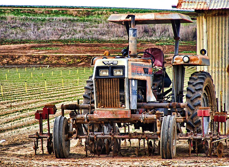 A tractor is parked near a field of crops beginning to sprout. photo