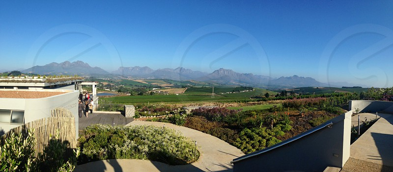 Cape Winelands South Africa  photo