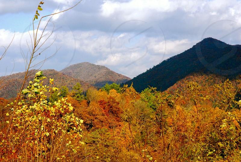 Asheville North Carolina - USA - Autumn Mountains photo