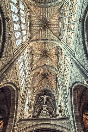 Cathedral vaults photo