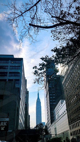 Empire State Nyc building Art Deco tourism view trees green perspective sky manhattan  photo