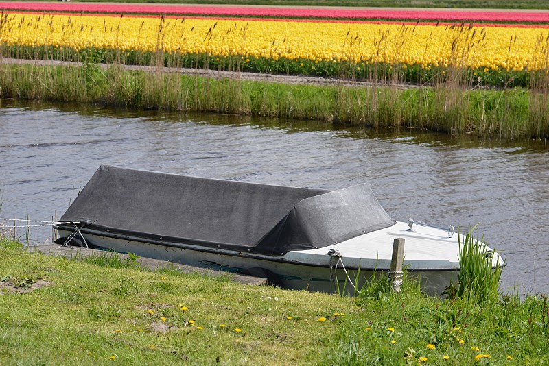 Boat and tulip fields photo