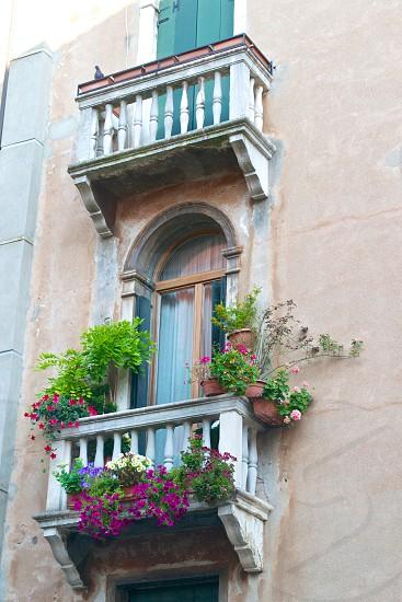flower pots on a balcony photo