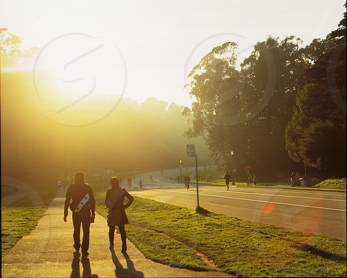 Golden Gate Park photo