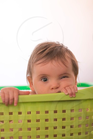 Baby toddler portrait photo