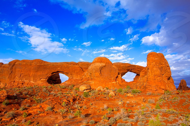 Arches National Park Windows section in Moab Utah USA photo