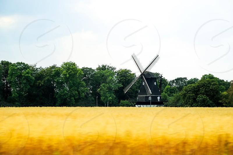 Farming farmers field fields  photo