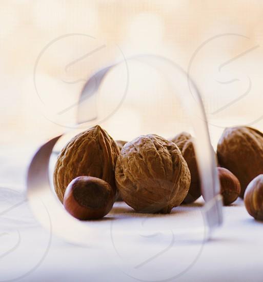 walnuts and chesnuts photo