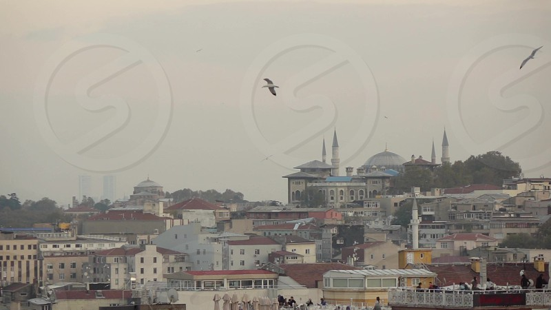 Panoramic view with flying birds above old part of Istanbul with historical Mosque buildings in summer day. Slow motion Full HD video 240fps 1080p. photo