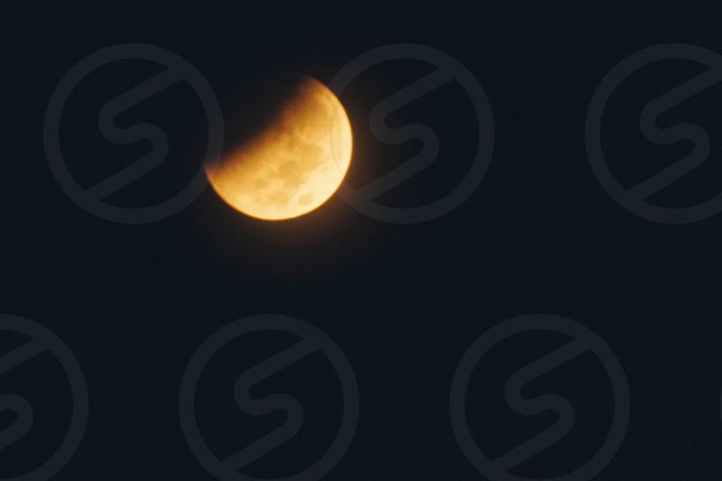 Blood Moon photo