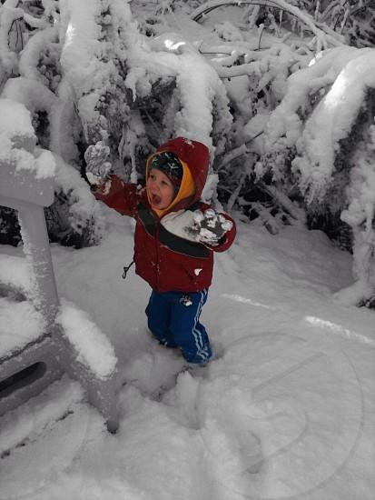The joy of snow photo