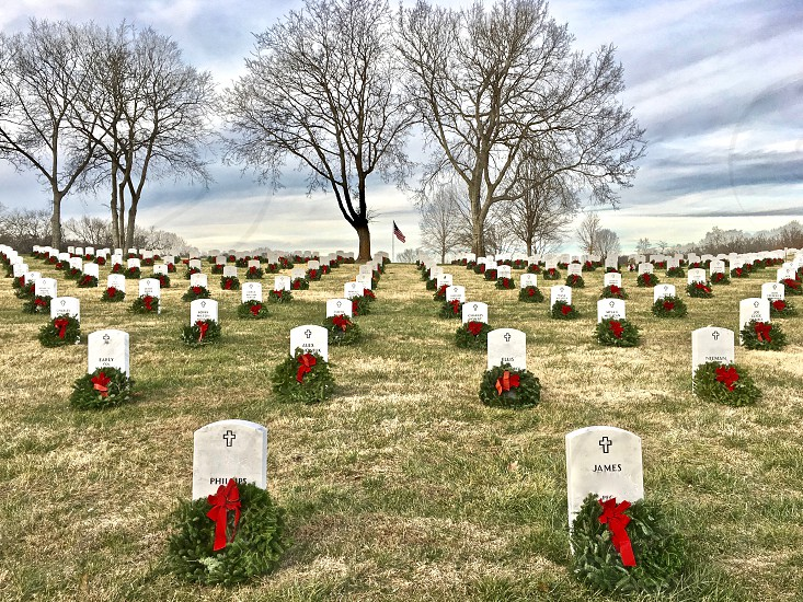 Christmas wreaths honor our veterans brightening headstones on a cold winter's day.  photo