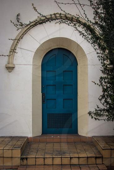 A blue door with vines growing around it photo