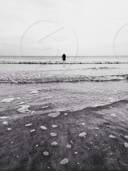 black and white shoreline image photo