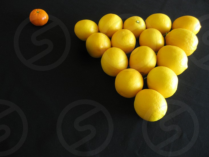 Fresh citrus fruit includes meyer lemons and a tangerine arranged whimsically in a diamond for a colorful billiards game against a black background for copy space.                          photo
