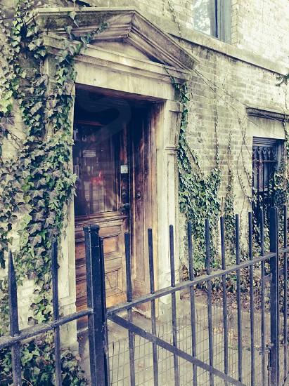 Door green photo