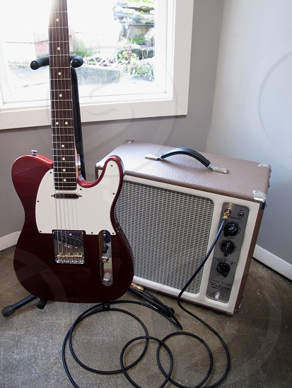 Tele in action. photo