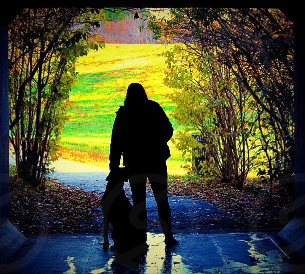 Dogs love man's best friend spring summer love friends silhouette photo