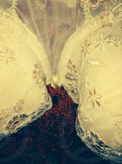 Embroidered Corset on Satin photo