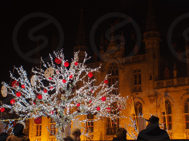 red bauble on silver tree beside white concrete castle photo