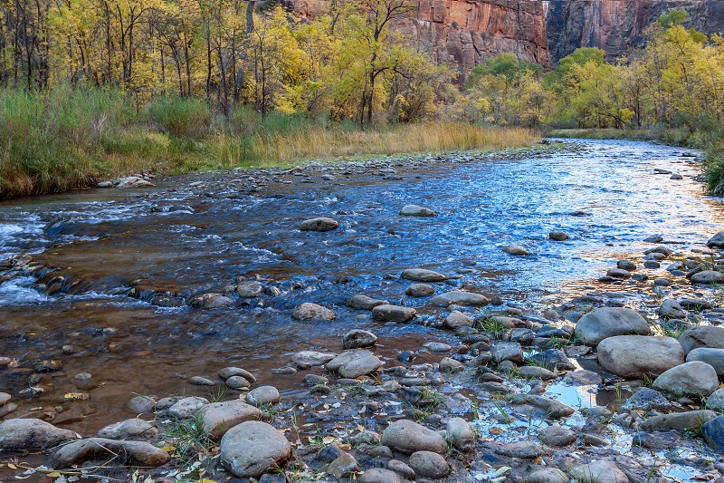 The Virgin River lazily winds it's way through Zion National Park photo
