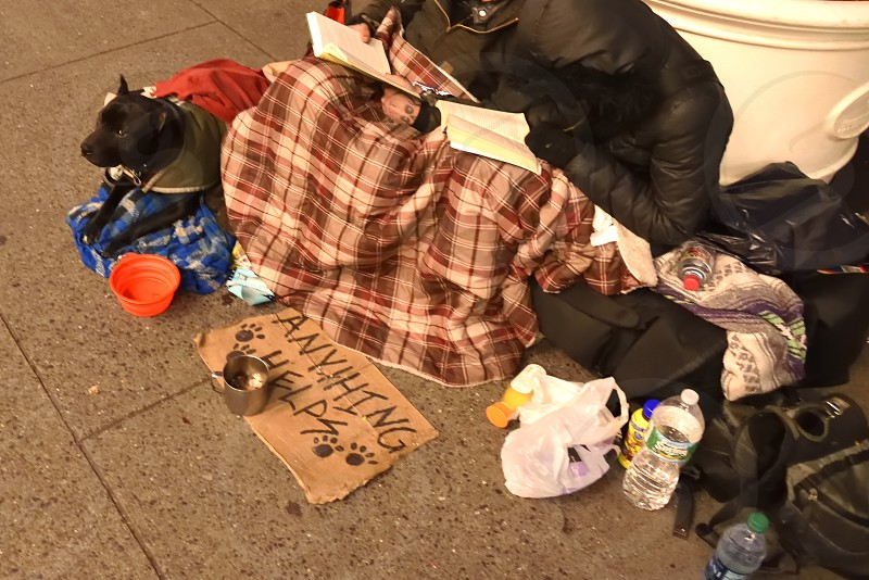 Homeless begging poverty cold abuse animal dog panhandlers squatting. photo