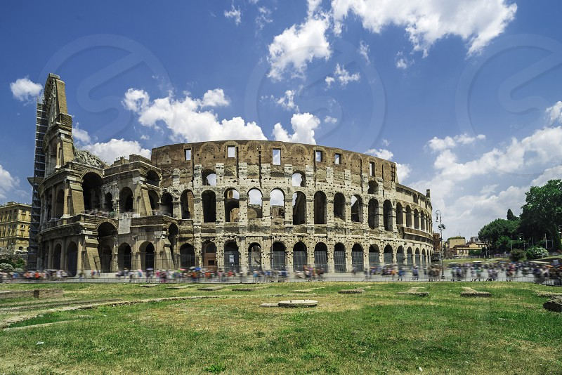The Colosseum in Rome. Green grass photo