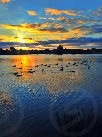Evening sunset at the lake photo