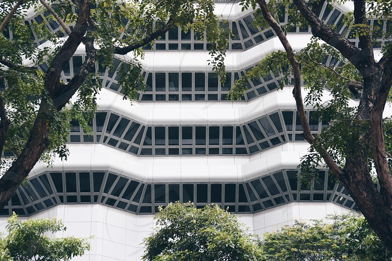Green environment garden city city in a garden Singapore windows curved windows architecture photo