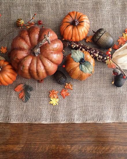 Fall Autumn Thanksgiving Pumpkin Pumpkins Acorn Leaves photo