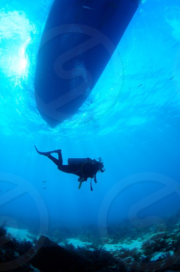 A scuba diver in the Florida keys. photo