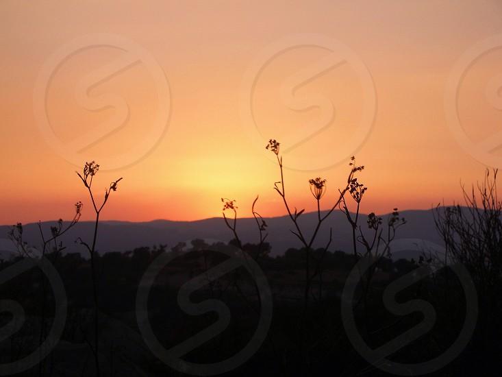 sunset photography photo