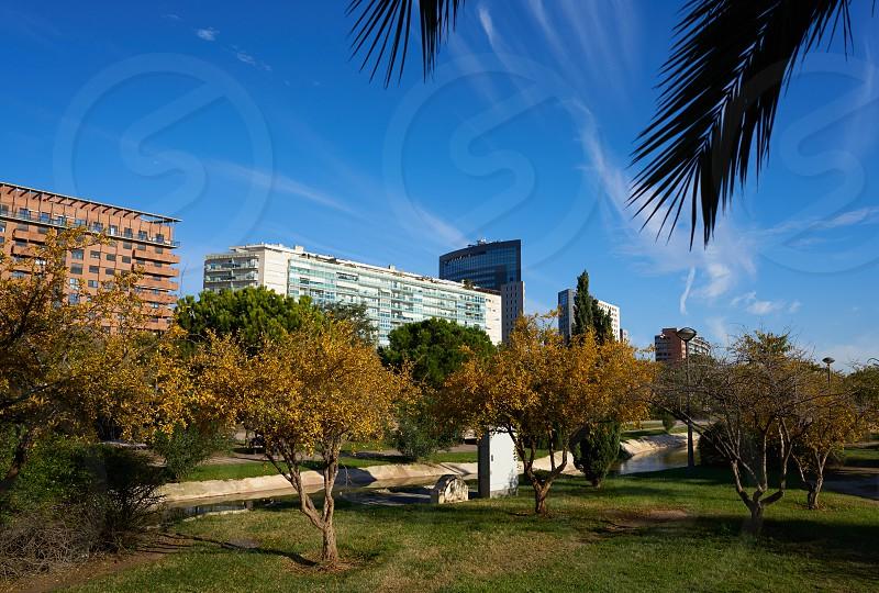 Valencia modern town skyline from the park view in Spain Mediterranean photo