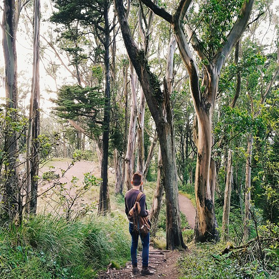 Man with leather satchel in the woods photo