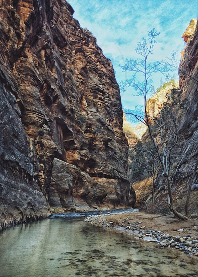Zion Narrows photo