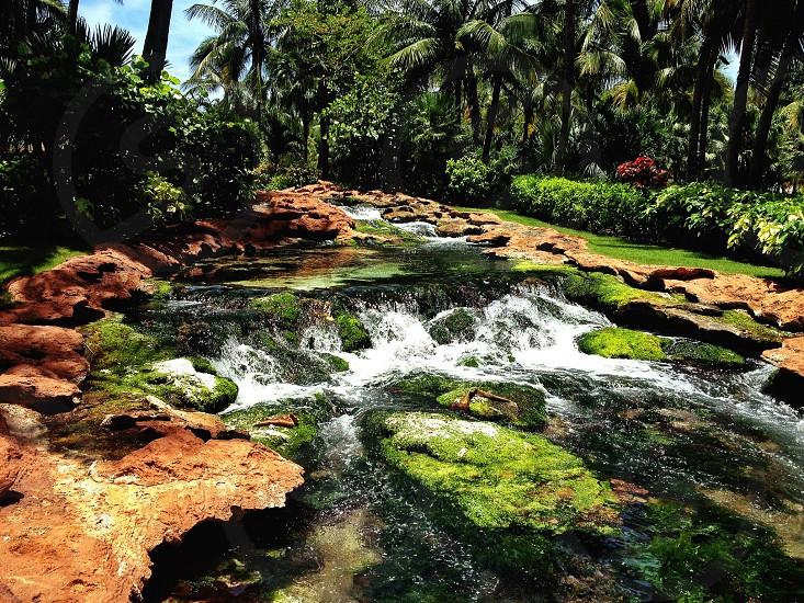 Babbling Brook Bahamas photo