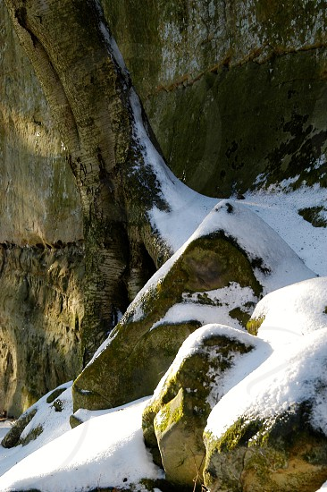 Winter. Cold. Snow. Tree. Rocks. Triangles. Shapes. Contour. Curve. Stone. Sunlight.  photo