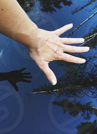 left human hand photo
