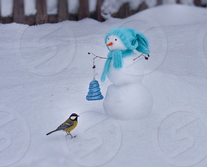 Snowman and a small bird  photo