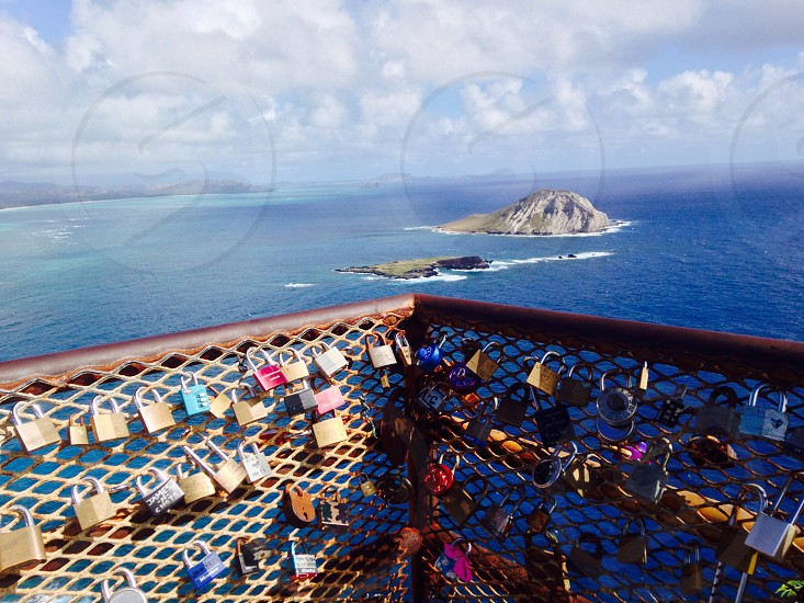 view of padlocks on metal wire mesh fence photo